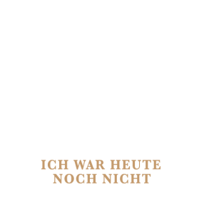 Gamer Shirt-Problem Lösung