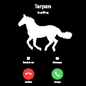 Mein Tarpan ruft an Pferde Shirt Geschenk Handy
