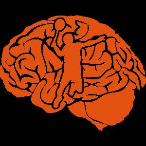 Badminton Gehirn cervello Gehirn cerebro