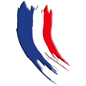 Französische Flagge Vintage 3D