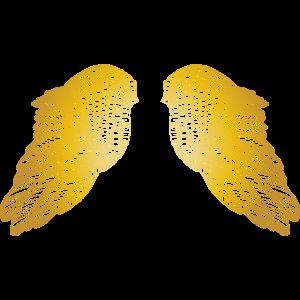 Schwebende goldene Feder Engelsflügel