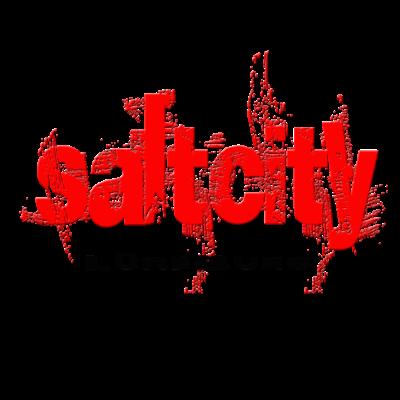 Lüneburg Saltcity - Für die Kinder der schönsten Stadt der Welt. Hansestadt Lüneburg - Salz,Lüneburg,Hansestadt