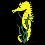Phil l'Hippocampe