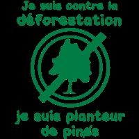 Pflanzer Kiefern gegen die Entwaldung