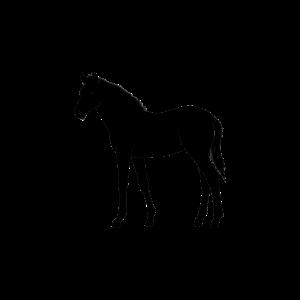 Reiten Pferd Reiter T-Shirt Geschenk