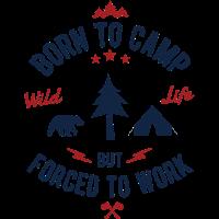 03 Camp Baum