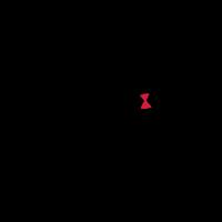 Latrodectus (Schwarze Witwe)