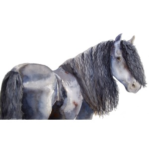 friesian horse color