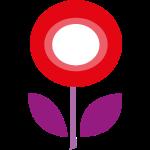 Daisy lila rot