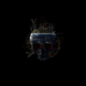 Tête de mort île