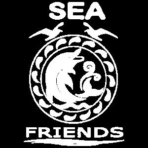 Delphin Shirts