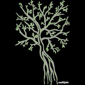 Abbildung Version grün & grau