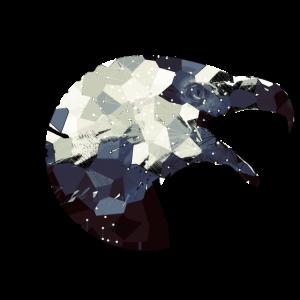 Wild Spirit Adler