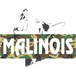 Malinois Camouflage Print