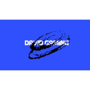 David gaming logo