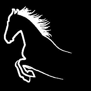 Pferde Geschenke Tshirt Pferdeliebhaber Geschenk