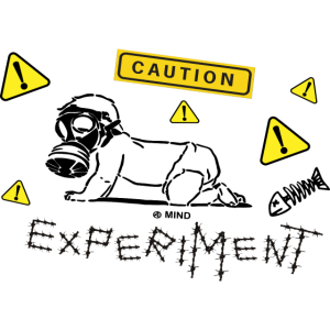 Experiment2