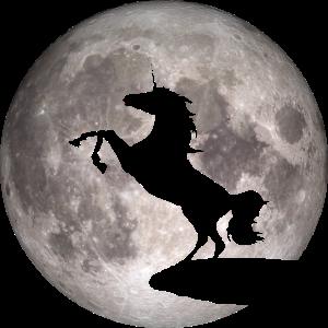 Einhorn romantisches Einhorn vor Mond Shirt
