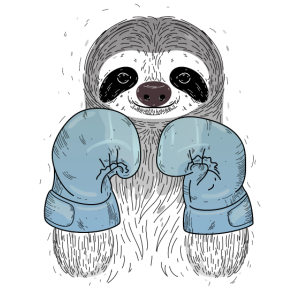 Boxing Sloth