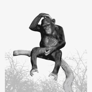 monkeymusictshirt