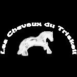 Logo LCDT Blanc