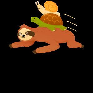 Sloth - Turtle - Snail - Cute Illustration