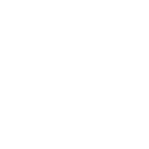Fakten Alternative 2 Weiß