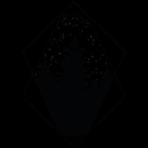 wald polygon forrest