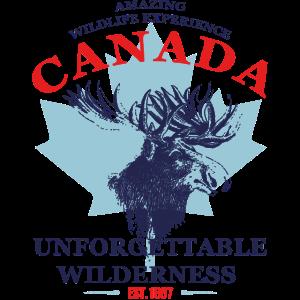 CANADA - MOOSE