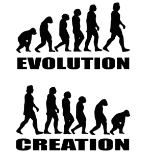 Evolution creation