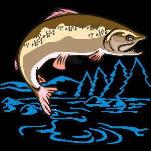 Fisch und See