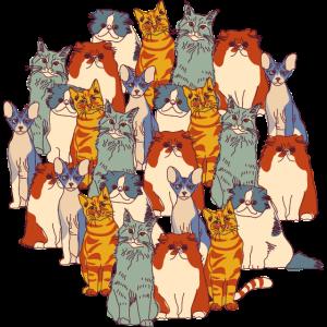 Katzenbündel
