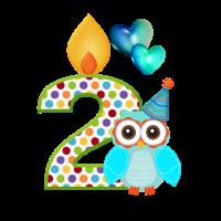 Geburtstag Zahl 2 Eule mit Luftballon