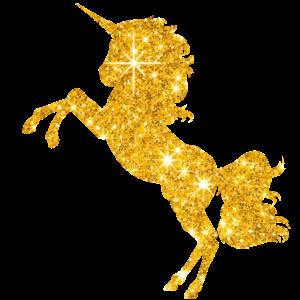 Goldenes Einhorn Mädchen Pferd Reiterin Geschenk