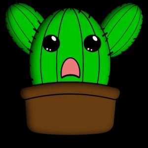 Kaktus Kuscheln