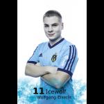 11icewolf.jpg