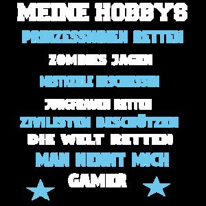 Gamer Hobby