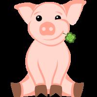 Schwein Kleeblatt