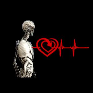 Anatomie-Herzfrequenz