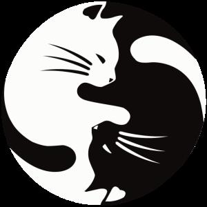 2 Katzen schmusen ,ying yang