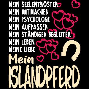 ISLANDPFERD - mein