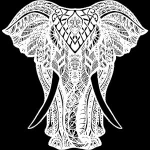 Elefant - Safari - Elephant love