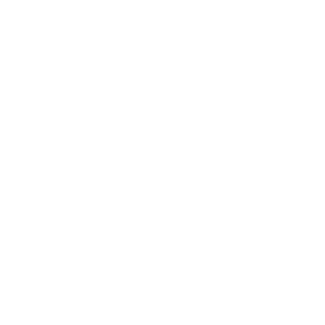 Polygon Katze