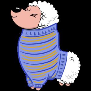 Alpaca mit Pullover