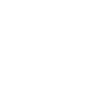 Straight outta The Woods