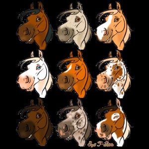 """Pferdesammlung """"Rascals"""", die 9!"""