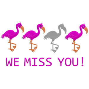We Miss You Flamingos witzig
