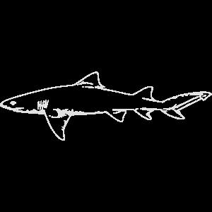 Langer Hai
