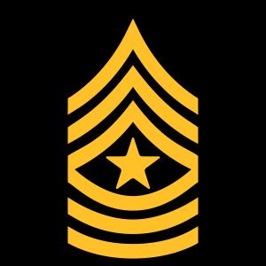 Insignien der Armee