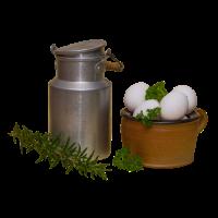 Milchkanne und Eier